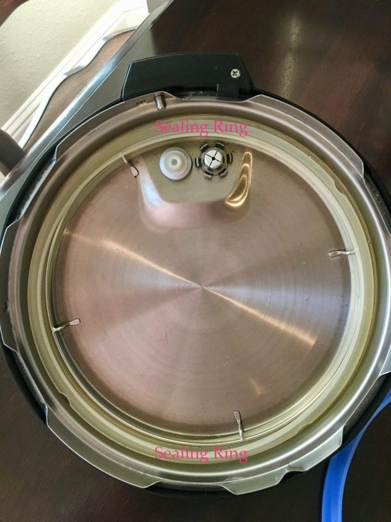 sealing ring view