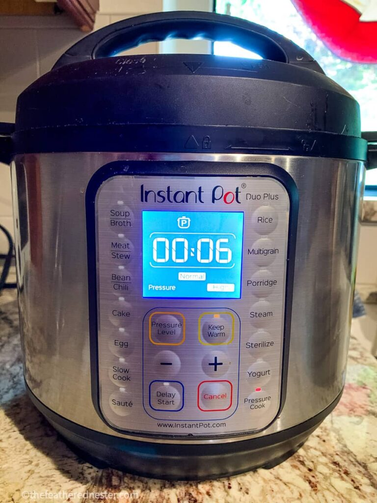 photo of Instant Pot with mashed potatoes pressure cooking