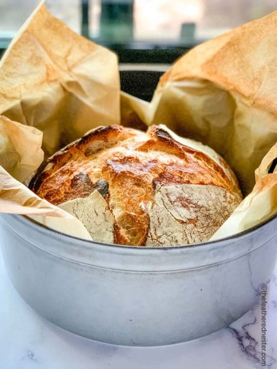 a loaf of dutch oven sourdough bread cooling